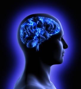 Brain maturation